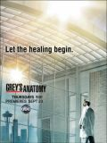 Анатомия страсти - 7 сезон (Grey's Anatomy) (6 DVD-9)