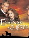 Я научу тебя любить (Te voy a ensenar a querer) (26 DVD-Video)